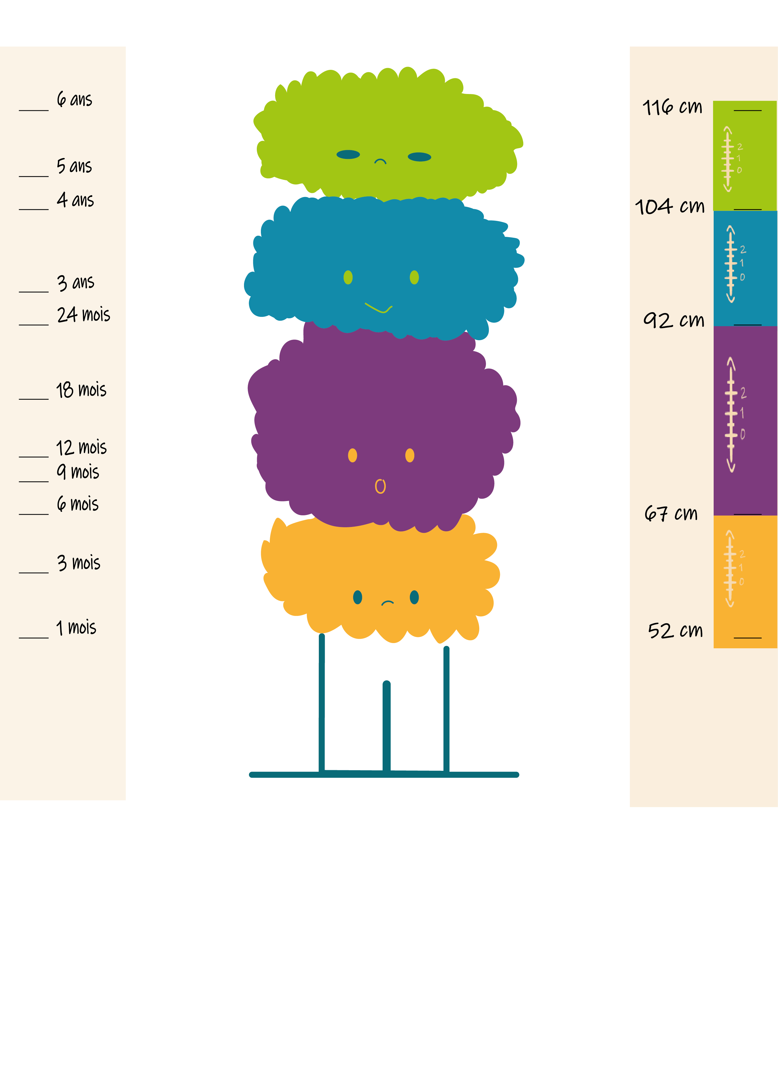 tailles evolutives
